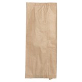 Double Bottle HWS Brown Paper Bag