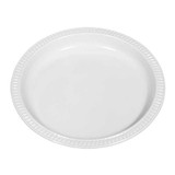 Large Oval Dinner Plate - 300x230mm
